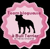 blog bull terrier
