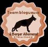 team blogueuse à chien versus team blogueuse à chat