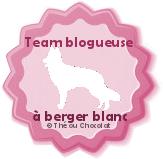 team blogueuse à berger blanc