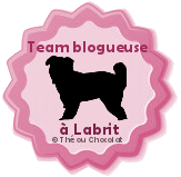 team blogueuse à labrit