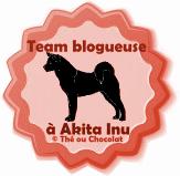 team blogueuse à akita inu