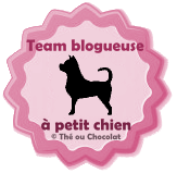 Team blogueuse à petit chien