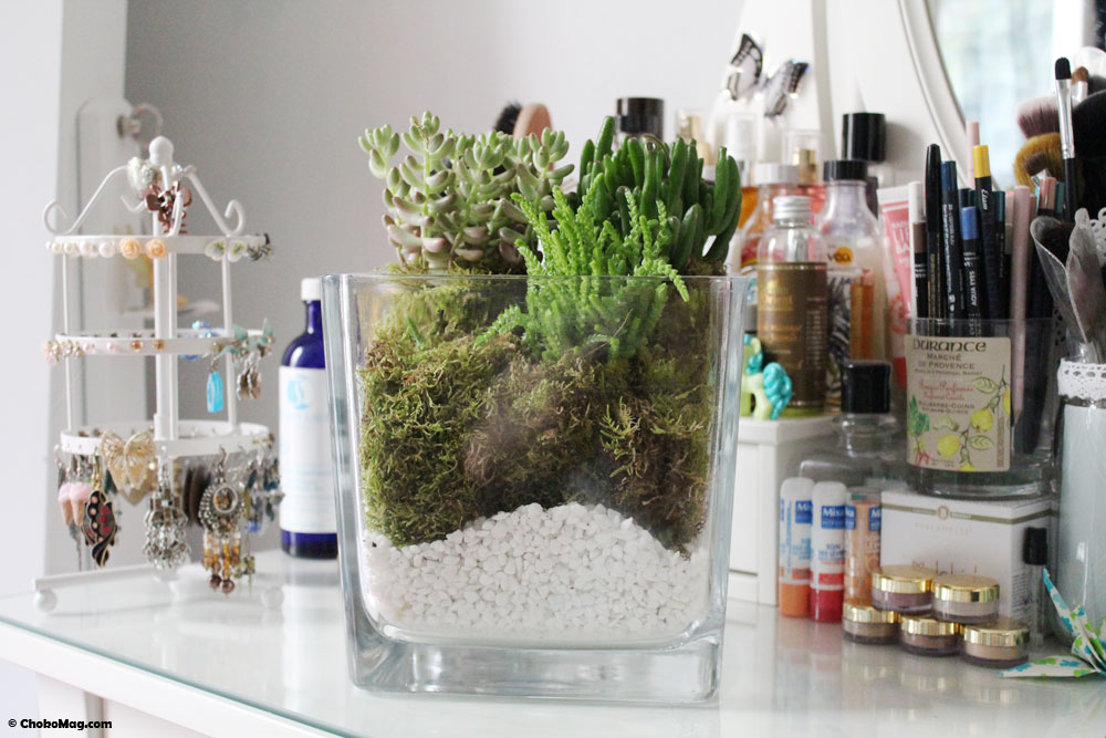 diy comment faire un terrarium avec des petites plantes chokomag. Black Bedroom Furniture Sets. Home Design Ideas