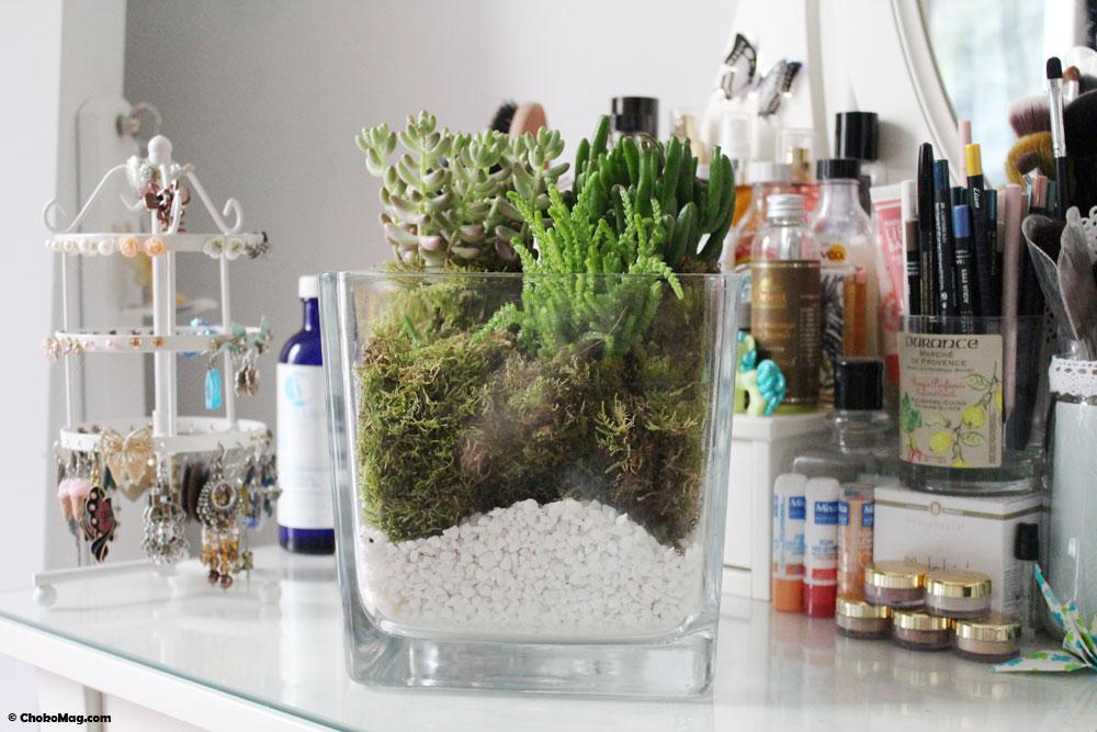 diy comment faire un terrarium avec des petites plantes chokomag. Black Bedroom Furniture Sets. Home Design Ideas
