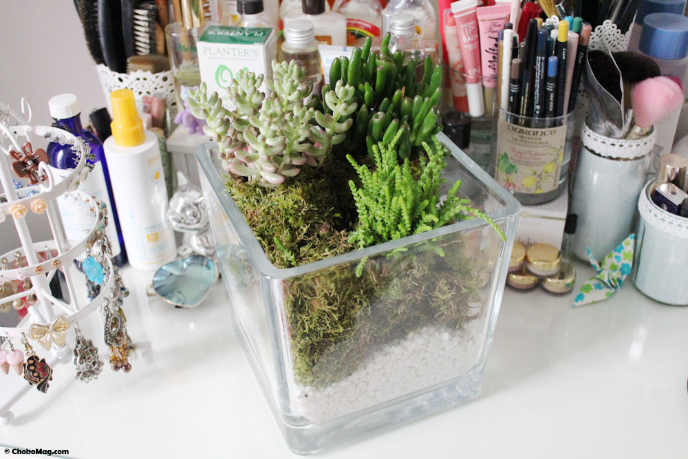 diy comment faire un terrarium avec des petites plantes. Black Bedroom Furniture Sets. Home Design Ideas